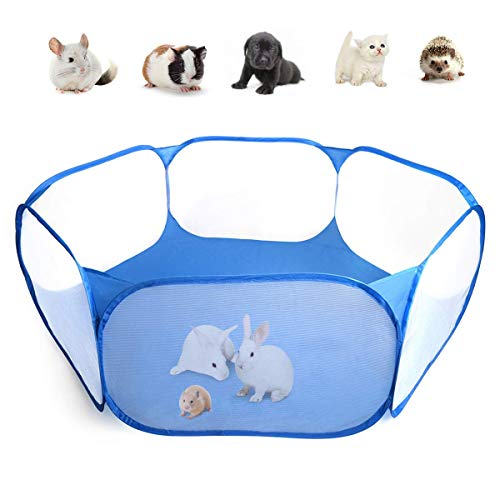 Best Clean Rabbit Cages