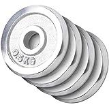 GORILLA SPORTS® Hantelscheibe Chrom 2 kg Gewicht mit 30/31 mm Bohrung