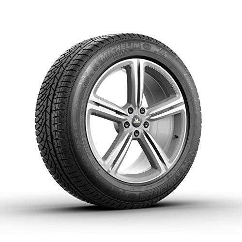 Michelin Pilot Pa4 All-Season Tire