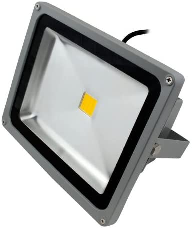 Sale LED Flood Light US plug 30W 2400Lm Warm New color 110V Wa Yr 1 2700K White