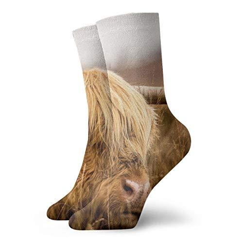 BJAMAJ Unisex Socken Highland Cow Interessante Polyester Crew Socken Erwachsene Socken Baumwolle