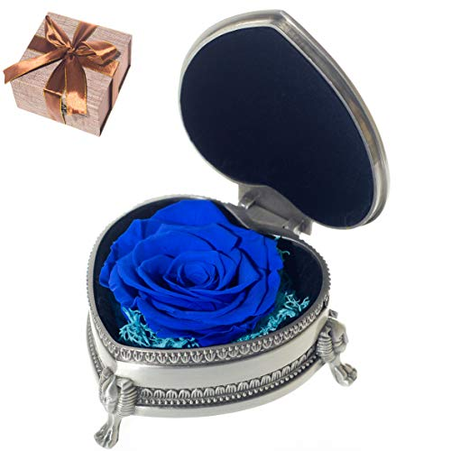 YHMY Handmade Forever Preserved Fresh Flower Eternal Real Rose with Classical Metal Box and Gift Package for Women Mothers Day, Birthday, Valentine's Day, Thanksgiving Day Anniversary