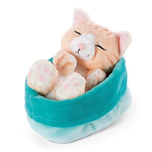 NICI 47142 Kuscheltier blau-grünem Körbchen 12 cm – Sleeping Kitties Plüschtier Mädchen, Jungen & Babys – Stofftier Katze zum Kuscheln, Spielen & Schlafen – Gemütliches Schmusetier, Braun