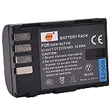 DMW-BLF19E DMW-BLF19 DSTE Batería de Repuesto Compatible con Panasonic Lumix DMC-GH3,DMC-GH3GK,DMC-GH3H,DMC-GH3HGK,DMC-GH3K Body,DMC-GH4H,DMC-GH4