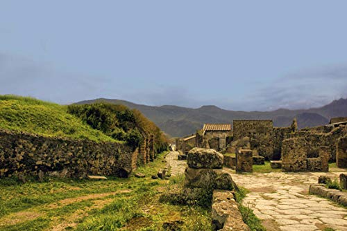 Wall Art Print on Canvas(32x21 inches)- Pompeii Italy Architecture Landmark City Ancient