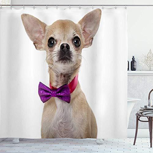 DYCBNESS Cortina de Ducha,Chihuahua de Pura Raza con Pajarita Aislado Corbata Animales...