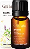 Gya Labs Breathe Essential Oil Blend - Peppermint and Eucalyptus for Sinus Relief and Nasal Congestion Relief - 100 Pure Therapeutic Grade Breathe Easy Essential Oils Blends for Aromatherapy - 10 ml