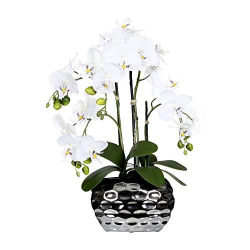 Creativ green Kunstpflanze Orchidee Phalenopsis Farbe weiß, inkl. silberfarbener Ovalvase, Höhe 55 cm