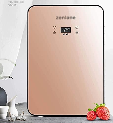 CDFCB Refrigerador Mini 2-IN-1 20L Portátil con la función de refrigeración y calefacción 12V / 220V Mini silencioso Adecuado para automóviles y Uso doméstico