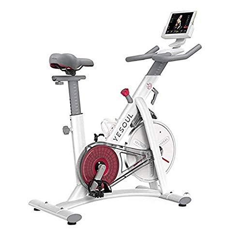 Ejercicio bicicleta estacionaria 220 libras de peso de capacidades cubierta ciclo de la bici con cómodo cojín del asiento y del monitor LCD for el hogar ejercicios de entrenamiento cardiovascular, Con