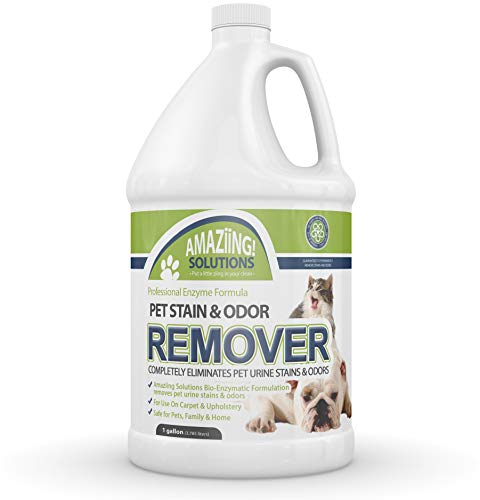 Amaziing Solutions Pet Odor Eliminator and Stain Remover Carpet Cleaner for Dog Urine and Cat...