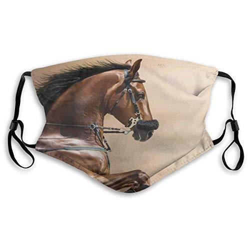Winddichter Gesichtsschutz mit austauschbarem Filter, Aktivkohle-Staubschutz, Kastanienbraun