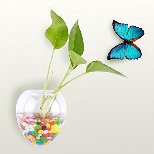 Hangplant, bloemen, vaas, glas, wand, hydrocultuur, aquarium, decoratie thuis, om op te hangen, terrarium, glas