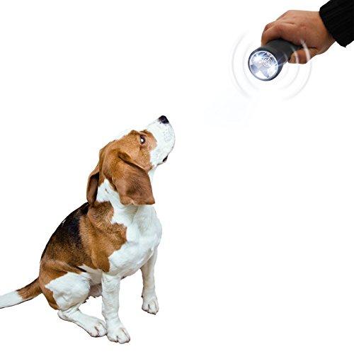 Gardigo Tiertrainer LED, tiergerechtes Trainings und Abschrecksystem mit Ultraschall und LED Taschenlampe, Hundeschreck