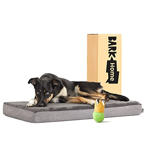 Barkbox Memory Foam Platform Dog Bed | Plush Mattress for Orthopedic Joint Relief (Medium, Grey)