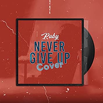 Never Give Up (Cover)