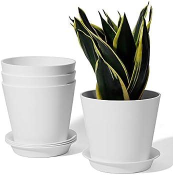 4-Pack Potey 5.5 Inch Succulent Plant Pot