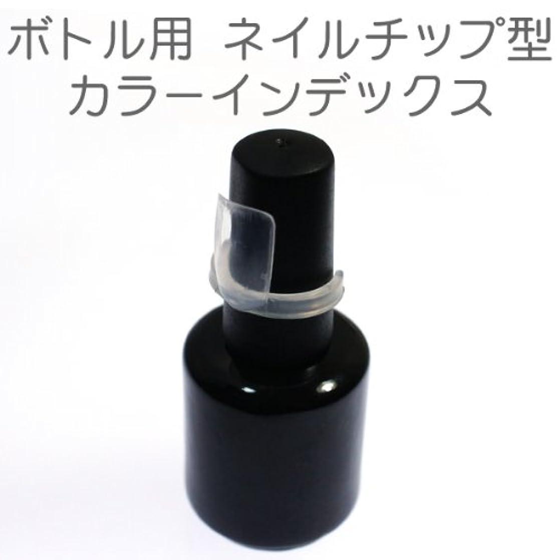 気体の広範囲に怒るボトル用カラーインデックス ネイルチップ型 50個セット ネイル カラーチャート