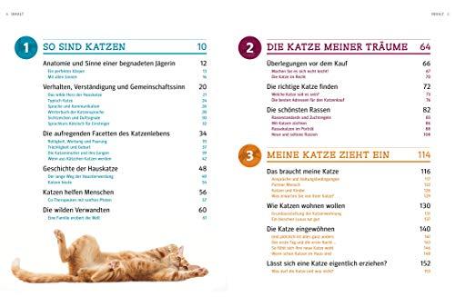 Praxishandbuch Katzen - 3
