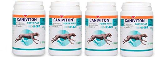Vetoquinol CANIVITON FORTE Plus 4 x 90 Tabletten (360 Tabletten) - Ergänzungsfuttermittel für Hunde zur Unterstützung der natürlichen Gelenkfunktion