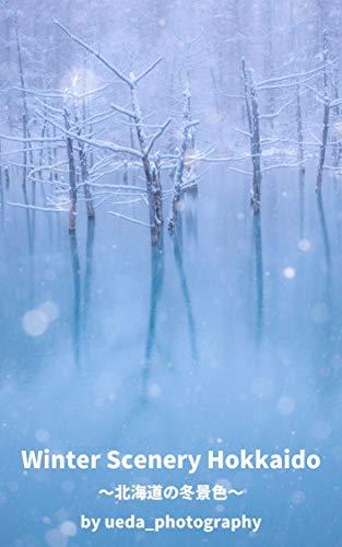 Winter Scenery Hokkaido ~北海道の冬景色~