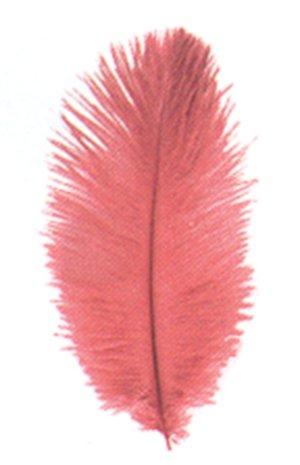 DIGE n27pl06/07 - Sachet de 3 plumes d'autruche 20 cm, rouge