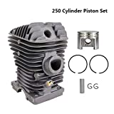 Yanhonin Juego de cilindro y pistón con 42,5 mm de diámetro para motosierra Stihl 250 piezas de gasolina, herramientas de jardín eléctricas