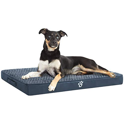 MFOX Large Orthopedic Foam Dog Bed for Small, Medium, Large and Extra Large Dogs Up to 35/55/95lbs - Orthopedic Egg-Crate Foam with Removable Washable Cover Beds