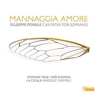 Mannaggia Amore - Giuseppe Porsile: Cantatas for Soprano