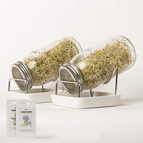 Juego de iniciación de tarros de germinados - Juego completo de vaso de germinación que incluye 200g de semillas germinadas orgánicas: Empieza ahora mismo y cultiva fácilmente los brotes en casa.