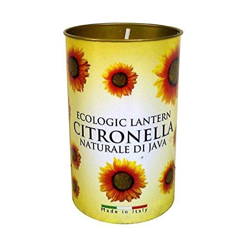 PRICES CITRONELLA Fragrant Lantern Candle - 40 Burn TIME