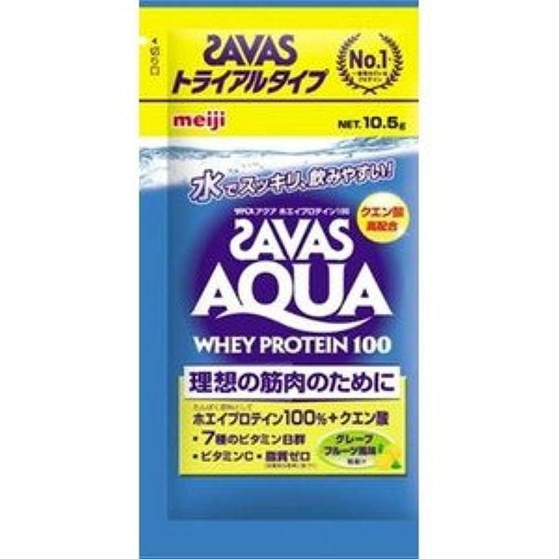 拡散するアレルギー性無法者(ロート製薬)肌研 極潤ヒアルロン洗顔フォーム 100g(お買い得3本セット)