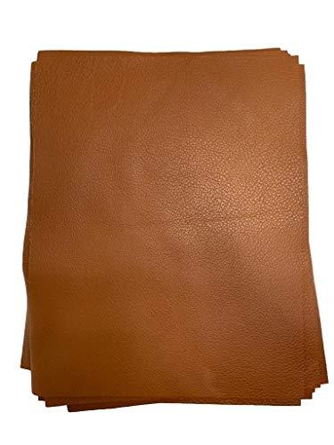 Natural Grain Cow Leather: 8.5'' x 11'' Pre Cut Leather Pieces (Cognac, 1 Piece)