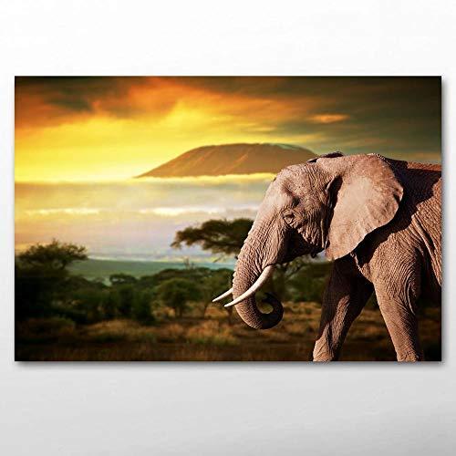 Fauna del Elefante Puzzle Adulto 1000 Piezas Mini Rompecabezas, Juegos de Rompecabezas para Adultos, Rompecabezas difíciles 50x75cm