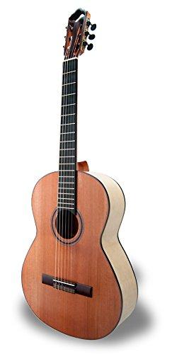 APC Instruments Exo Fla - Instrumento de cuerdas