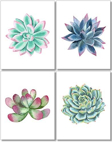 Succulent Wall Art Prints - Botanical Print - Cactus Decor - Set of 4-11x14 - Watercolor - Unframed