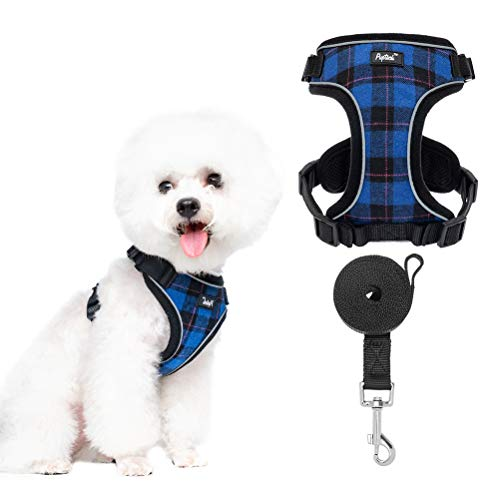 Puppy Harness and Leash Set - Reflective Small Dog Vest Harness for Walking, Classic Plaid Harness with Escape Proof Buckle, Soft Mesh Jacket for Puppies, Cats