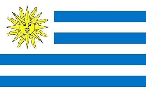 U24 Fahne Flagge Uruguay 60 x 90 cm