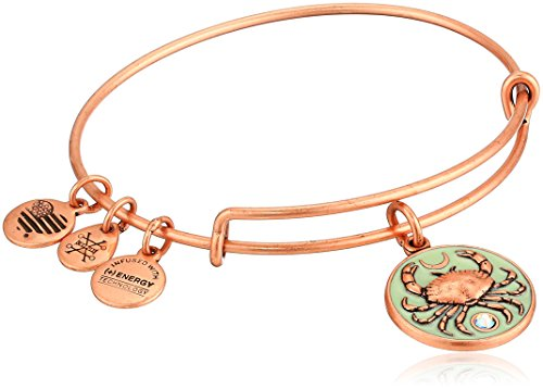 Alex and Ani Women's Color Infusion, Crab Charm Bangle Bracelet, Rafaelian Rose Gold, Expandable