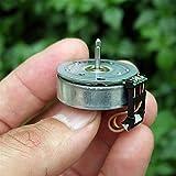 Jjzhb PYunLi-Motor de Corriente Continua Motor sin escobillas de DC, Micro Motor...