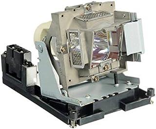 Visdia BL-FU310B//5811118436-SVV Lampe de Rechange avec bo/îtier pour projecteurs Optoma EH500 X600 BR561 VIVITEK D966HD D967 D968U