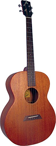 Ashbury AT-24 Tenor-Gitarre