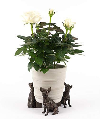 Potty Feet Chihuahua Figures Plant Pot Feet - Planter Support - Handmade Decorative Ornaments - 3pcs