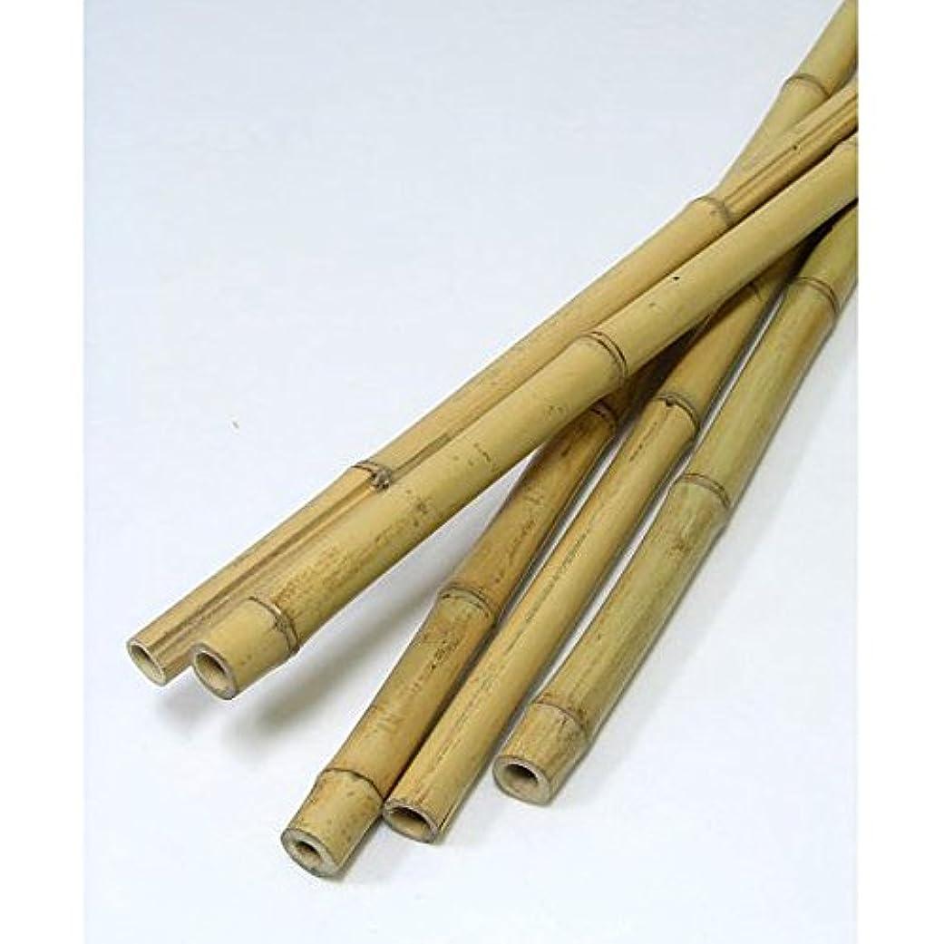 でも前提サーカス天然竹支柱 白竹 長さ2.4m 40本セット [生垣?支柱に!]