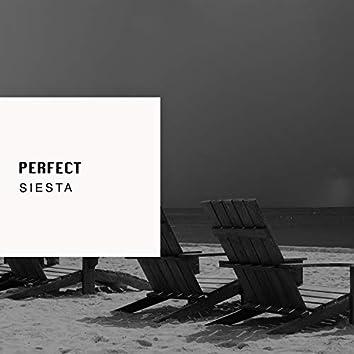 2019 Perfect Siesta