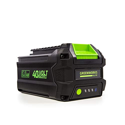 Greenworks L-600 40V 6AH Smart Lithium-Ion USB Battery, 6.0 Ah