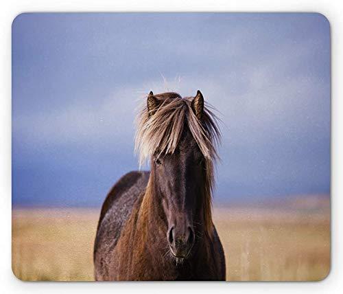Island Mauspad, Nahaufnahme Pferd Silhouette auf einem verschwommenen Hintergrund, Rechteck rutschfeste Gummi Mousepad, Standardgröße, Decke blau braun Kamel