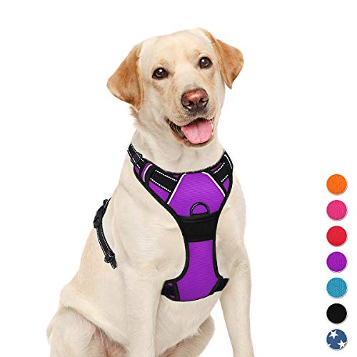 BARKBAY No Pull Dog Harness Large Step in Reflective Dog Harness with Front Clip and Easy Control Handle for Walking Training Running(Purple,L)