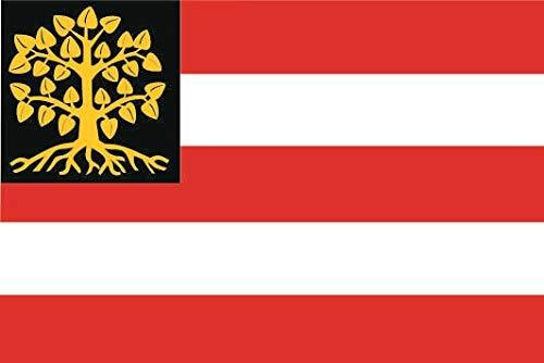 U24 Sticker s-Hertogenbosch (Nederland) vlag vlag 8 x 5 cm autosticker sticker sticker