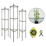 GROWNEER 3 Packs Plant Cages Assembled Tomato Garden Cages Stakes Vegetable Trellis, with 9Pcs Clips and 328Ft Twist Tie, for Vertical Climbing Plants